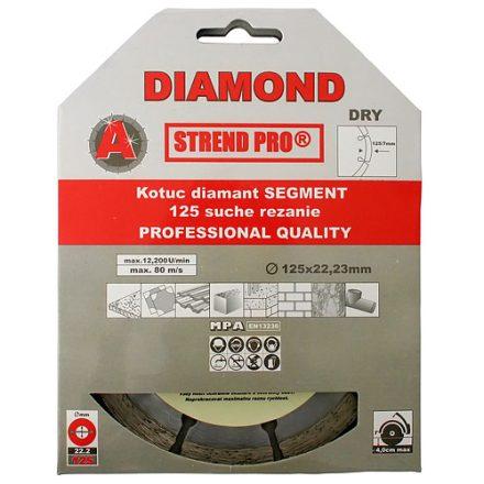 Strend Pro gyémánt vágókorong szegmenses 125 x 22,23 mm,standard
